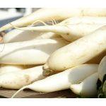 Radish Daikon Oriental Seeds - Raphanus Sativus